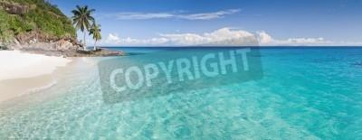 Fototapeta Bezludna wyspa panoramy z palmy na plaży