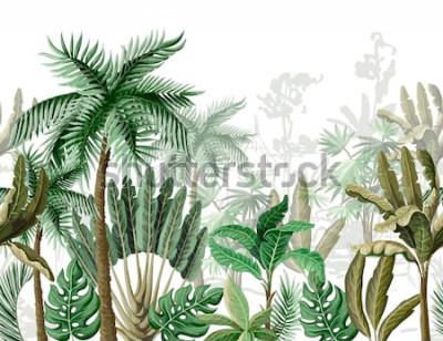 Fototapeta Bezszwowa granica z tropikalnym drzewem, takim jak palma, banan.