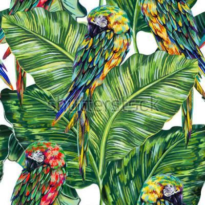 Fototapeta Bezszwowe tło wzór kwiatowy z papugi, piękne ptaki, tropikalny liści, liść dżungli. Egzotyczne lato ilustracja
