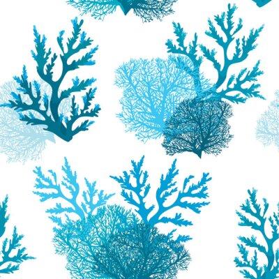 Fototapeta Bezszwowy wzór z koralem.