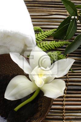 Biała orchidea w spa