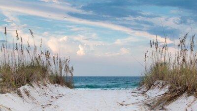 Fototapeta Biała piaszczysta plaża ścieżka do oceanu.