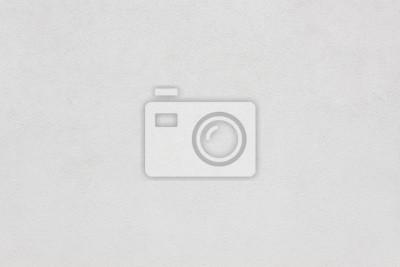 Fototapeta Biała ściana tynk stiuk tekstury tła