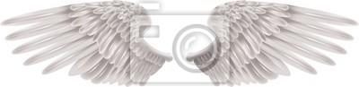 Fototapeta Białe Skrzydła