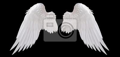 Fototapeta biały anioł skrzydło izolowane