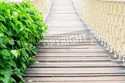 Fototapeta biały most linowy