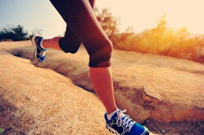 Fototapeta biegacz kobieta sportowiec działa na górskim szlaku