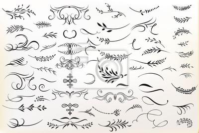 Fototapeta Big collection of vector calligraphic flourishes for design
