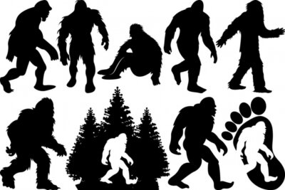 Fototapeta Bigfoot SVG Cut Files | Bigfoot Silhouette | Yeti Bigfoot Svg | Bigfoot With Tree Svg | Bigfoot Bundle