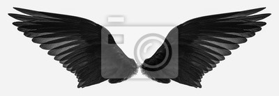 Fototapeta bird wings isolated on a white background