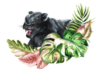 Fototapeta Black panther or jaguar with exotic tropical or jungle Leaves, Watercolor hand drawn illustration, isolated on white background