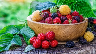 Fototapeta Black raspberries in a bowl in the garden.raspberries and blackberries in a bowl.Summer berry harvest.Food background.Closeup