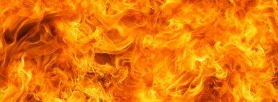 Fototapeta Blaze Fire Flame Conflagration Texture For Banner Background