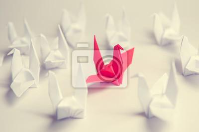 Fototapeta Bliska czerwony ptak latający inaczej przez grupę biały ptak, biznesowej zmieniarka gra. styl vintage filtra.