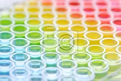 bliska enzymatyczny płytce testowej Immunospot