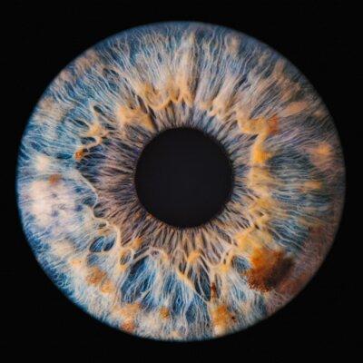 Fototapeta blue eye iris