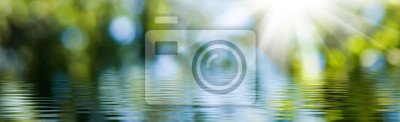 Fototapeta blurred image of natural background from water and plants