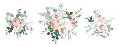 Fototapeta Blush pink garden roses, ranunculus, hydrangea flowers vector design bouquets