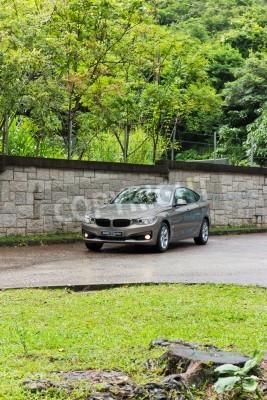 Fototapeta BMW 3-Series GT 2013 model Golden brązowy kolor