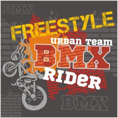 Fototapeta BMX rider - zespół miejski. Wektora projektu.
