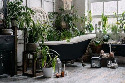 Fototapeta Bohemian bathroom with lots of potted greenery