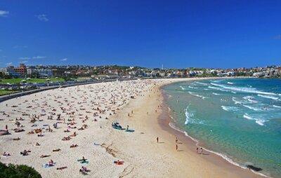 Fototapeta Bondi Beach w Sydney w Australii