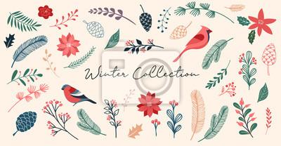 Fototapeta Botanical Christmas, Xmas elements, winter flowers, leaves, birds and pinecones isolated on white backgrounds