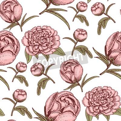 Fototapeta Bouquet vintage hand drawn style flowers bud wedding bloom elegant birthday nature design romantic flora blossom seamless pattern background vector illustration.
