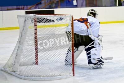 Fototapeta Bramkarz hokejowy