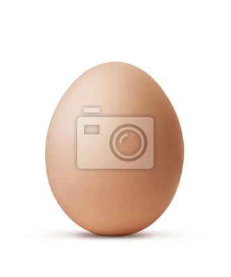 brązowy jaj na białym tle z wycinek ścieżki