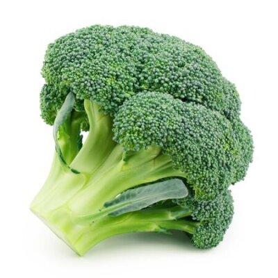 Fototapeta Broccoli isolated on white background