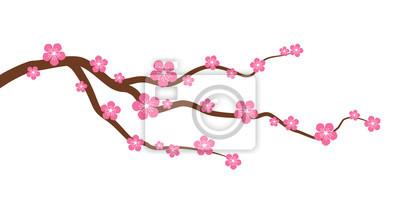 Fototapeta Brzoskwinia i kwiat wiśni gałęzi drzewa z kwiatami płaskiej grafiki wektorowej