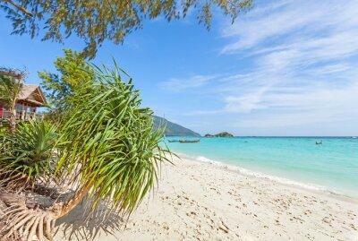 Fototapeta Bugalow przez dziewiczy plaży, lato raju tle.