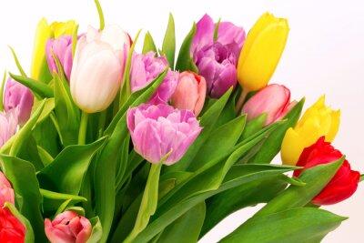 Fototapeta Bukiet tulipanów urodzinowy prezent walentynkowy matka tło wiosna selektywne soft focus stonowanych zdjęcie