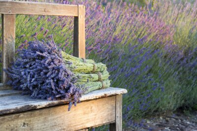 Fototapeta Bukiety na lavenders na drewnianej ławce w starym