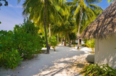 Fototapeta Bungalowy na plaży i szlaku piasku