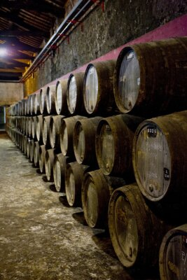 Fototapeta Burmester winnicy, Porto, Douro Province, Portugal