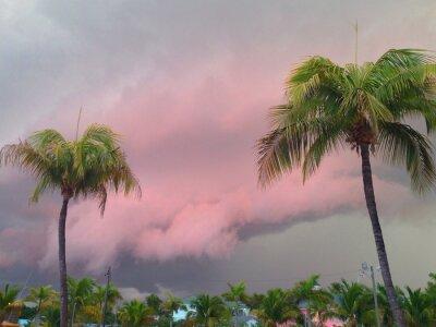 Fototapeta Burza Zatoki Meksykańskiej