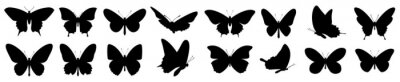 Fototapeta Butterflies silhouette set. Vector illustration