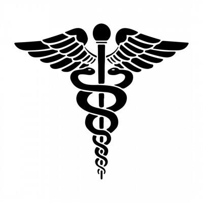 Fototapeta Caduceus - Medical Snake Logo Icon Vector Eps Isolated on White