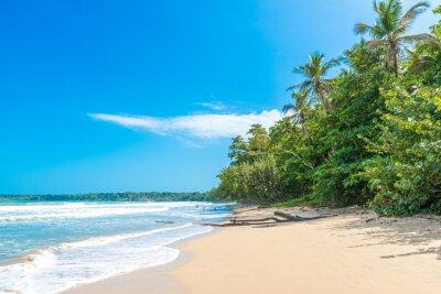 Fototapeta Cahuita - park narodowy z pięknymi plażami i lasami tropikalnymi w Kostaryce