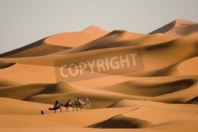 Fototapeta Camel Trekking w Maroku