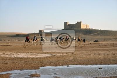 Camel trip w Sahary Merzouga, Maroko, Afryka Północna