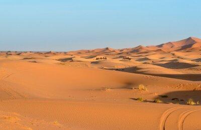 Caravan wielbłądów w Erg Chebbi Wydmy piaszczyste w pobliżu Merzouga, Maroko