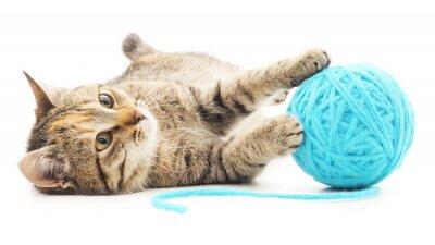 Fototapeta Cat with ball of yarn