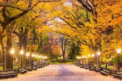 Fototapeta Central Park w centrum handlowym w Nowym Jorku podczas przedświtu.