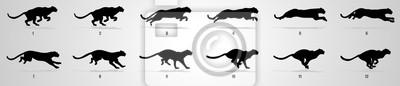 Fototapeta Cheetah run cycle animation sequence