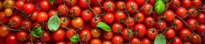 Fototapeta Cherry Tomaten hintergrund panoramma