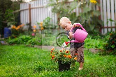 Fototapeta Child boy watering flowers in garden from can