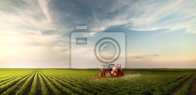 Fototapeta Ciągnik oprysku pestycydów na polu soi